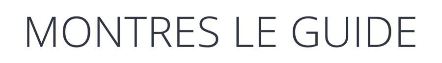 Montres Le Guide Logo